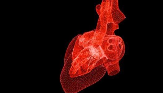3D Printed Organs in Space