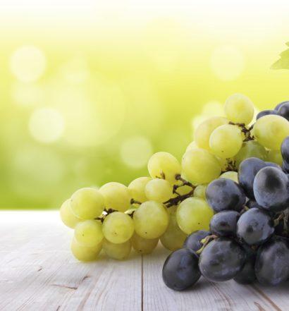 Top 10 Wineries-Boss Magazine