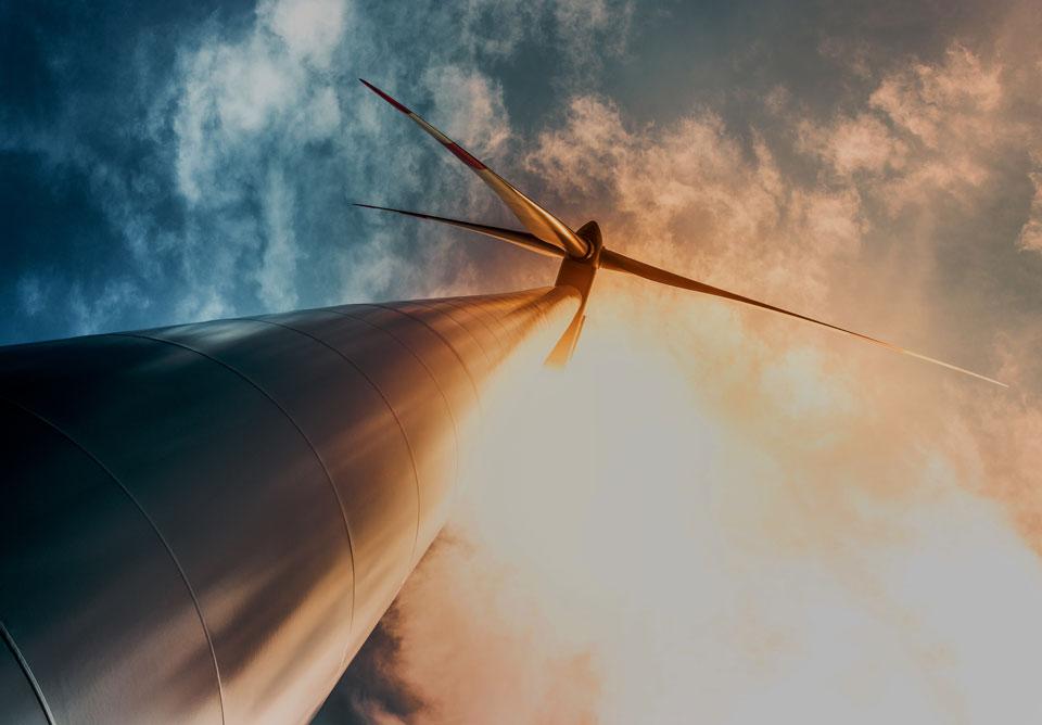 national energy guarantee, the venture magazine