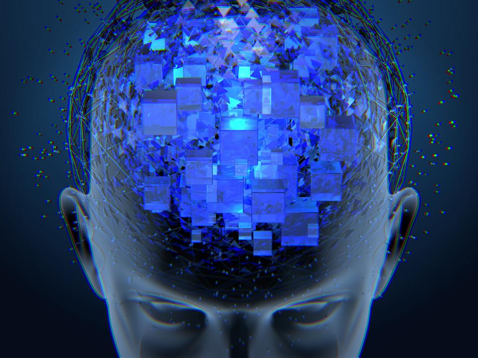 brain computer interface, the venture magaine