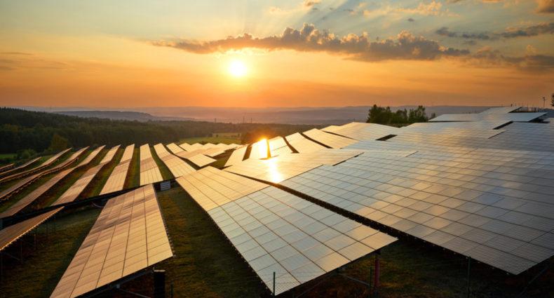downer group solar farm, the venture magazine