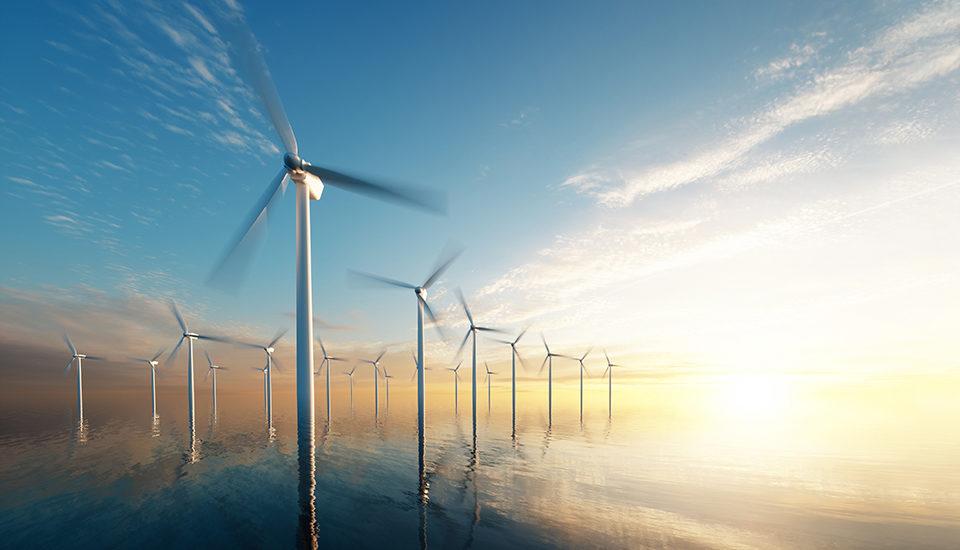 offshore wind farm, the venture magazine